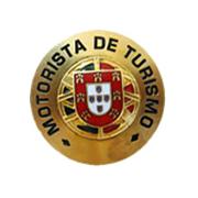 Tourism driver pin